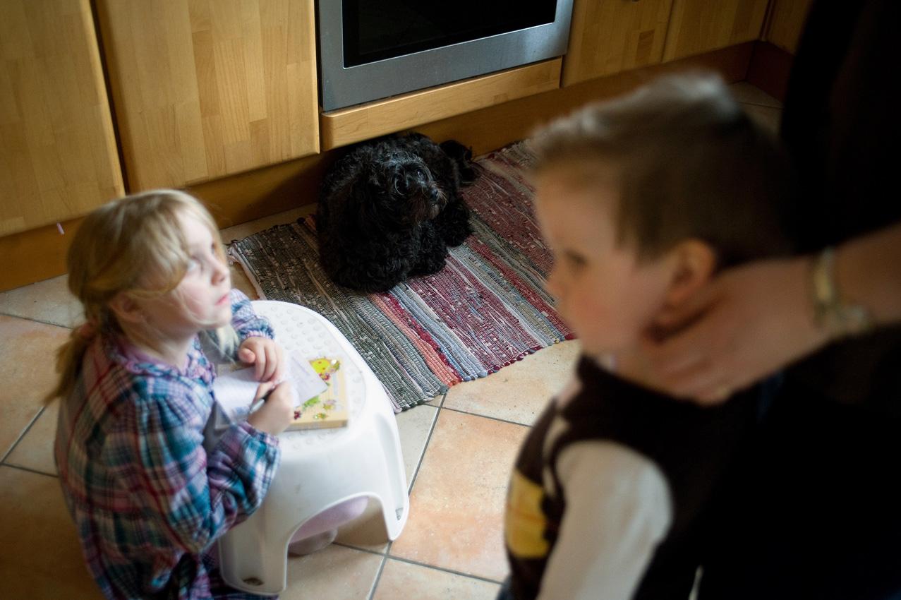 Das Leben mit einem Diabethikerwarnhund. Luisa hat Diabetes. Um mit der Krankheit besser leben zu können bekam sie von ihren Eltern einen Diabethikerwarnhund. Der Hund erkennt schon am Atemgeruch wenn der Blutzuckerspiegel sinkt. Ohne ihn müsste alle 10 Minuten gemessen werden. Luisa beim Malen in der Küche, der Hund immer in der Nähe. Rechts im Bild streichelt die Mutter Tobias Kopf und unterhält sich mit Luisa.