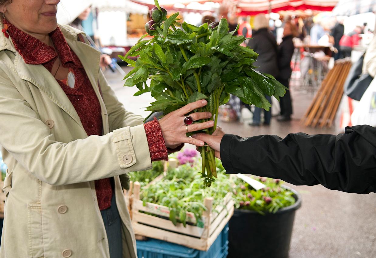 Wochen-Markttag in Refrath, Bergisch Gladbach, am 7.5.2010, fotografiert von Ulla Franke. Frau Maßen bekommt die Pfingstrosen von der Verkäuferin überreicht.